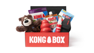 kong subscription box filled with toys and treats