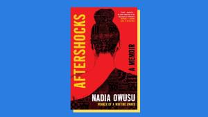 """""""Aftershocks"""" by Nadia Owusu"""