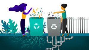 Recycling and Composting, Skimm'd