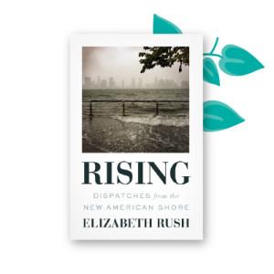 """""""Rising"""" by Elizabeth Rush"""