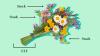 ETF Bouquet