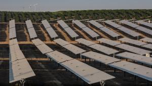 Pistachios and orange groves surround a solar panel array