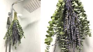 Lavender Eucalyptus bundle