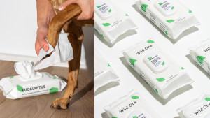cleaning wipes for paws and dog coats