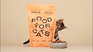 cat meal plan