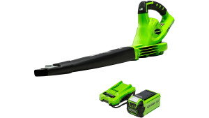 greenworks leaf blower