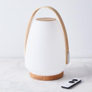 Speaker Lantern