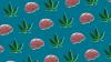 Marijuana and your brain