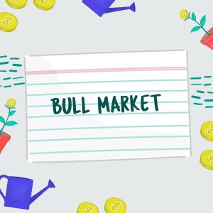 FSL Stock Market Bull Market V2