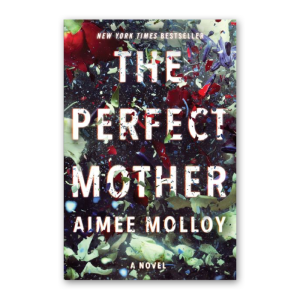 """""""The Perfect Mother"""" by Aimee Molloy"""