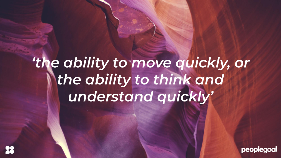 What does 'agility' mean for HR?