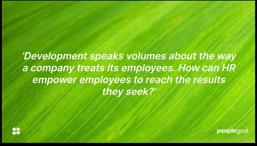 Company culture and development