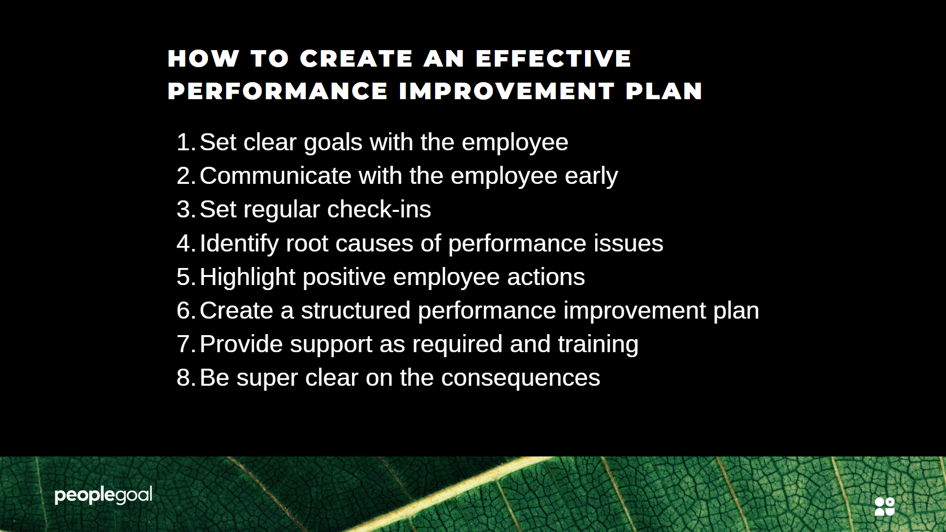 Performance Improvement Plan Effectiveness