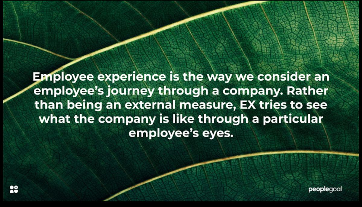 what is employee experience peoplegoal
