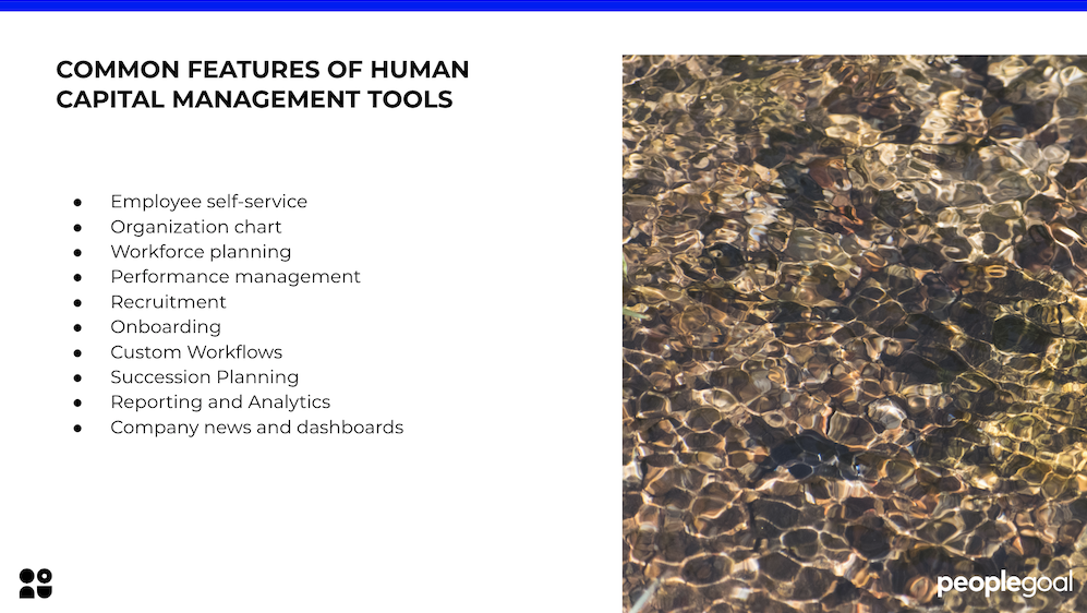 Features of human capital management tools peoplegoal