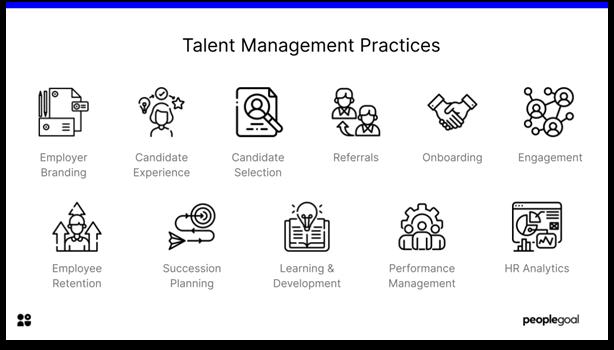 Talent Management - talent management practices