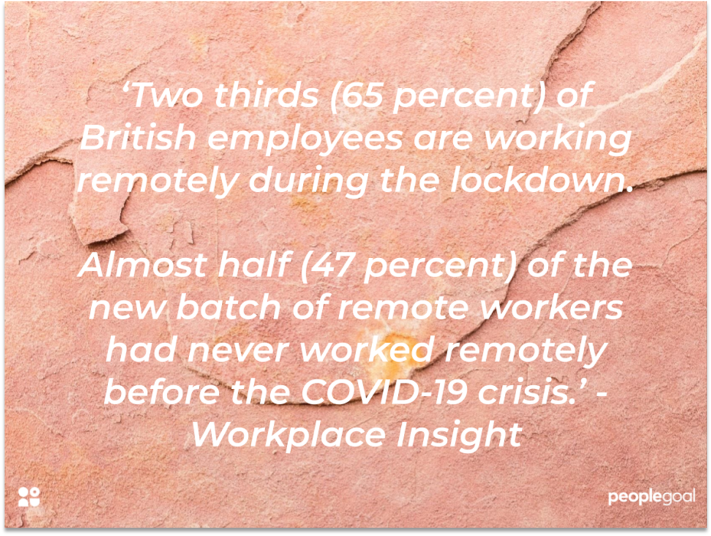 remote workers insight
