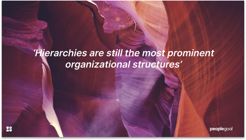 Types of organizational culture - Hierarchy culture