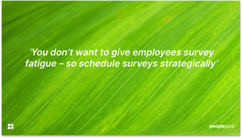 Employee engagement survey questions timing