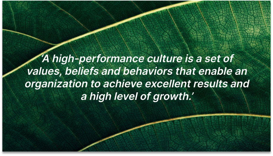 high-performance culture definition