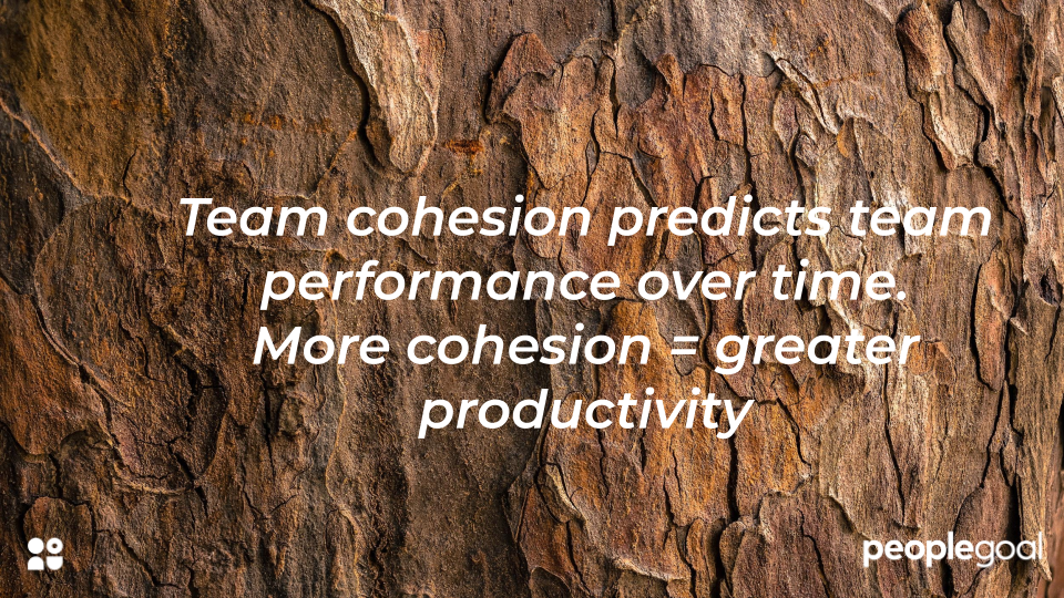 cohesion = productivity - manager comments for the next review cycle