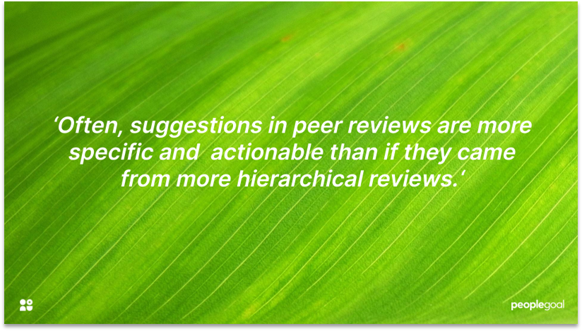 Peer Reviews for Performance Feedback disadvantages