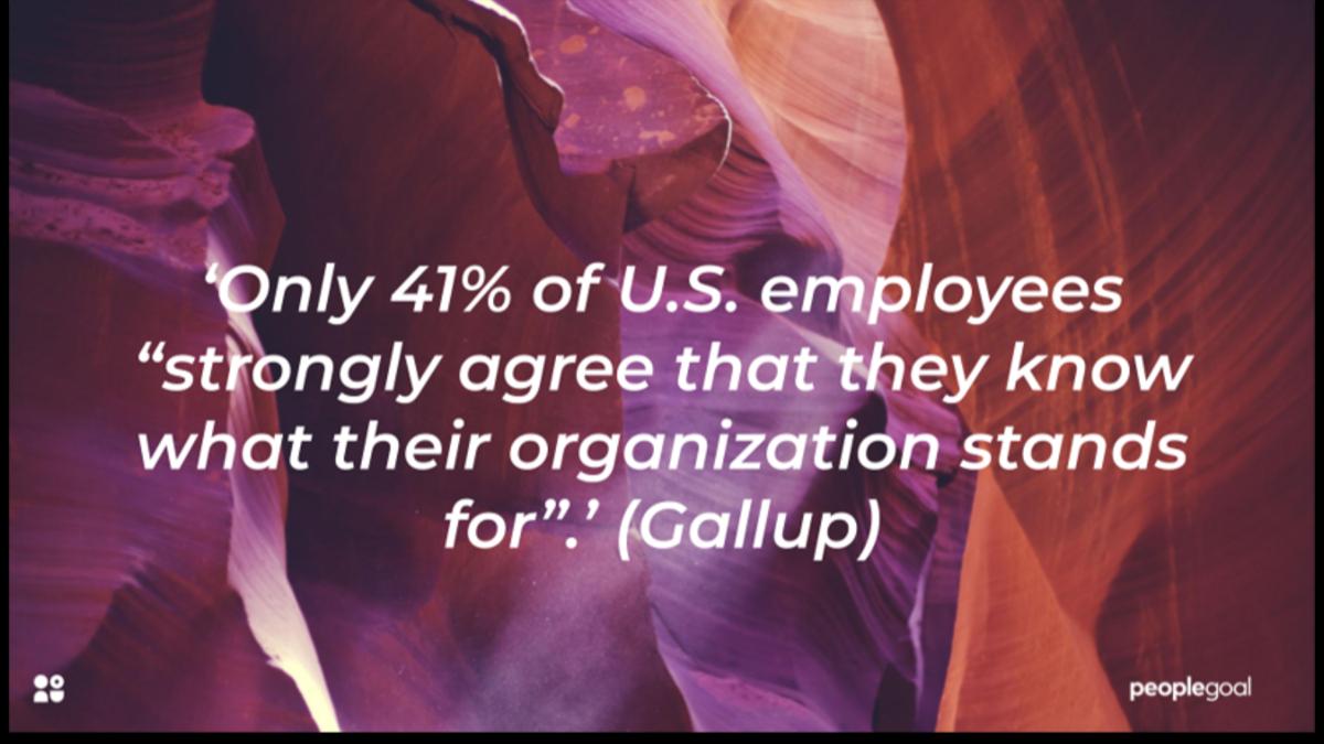 Company Culture Awareness