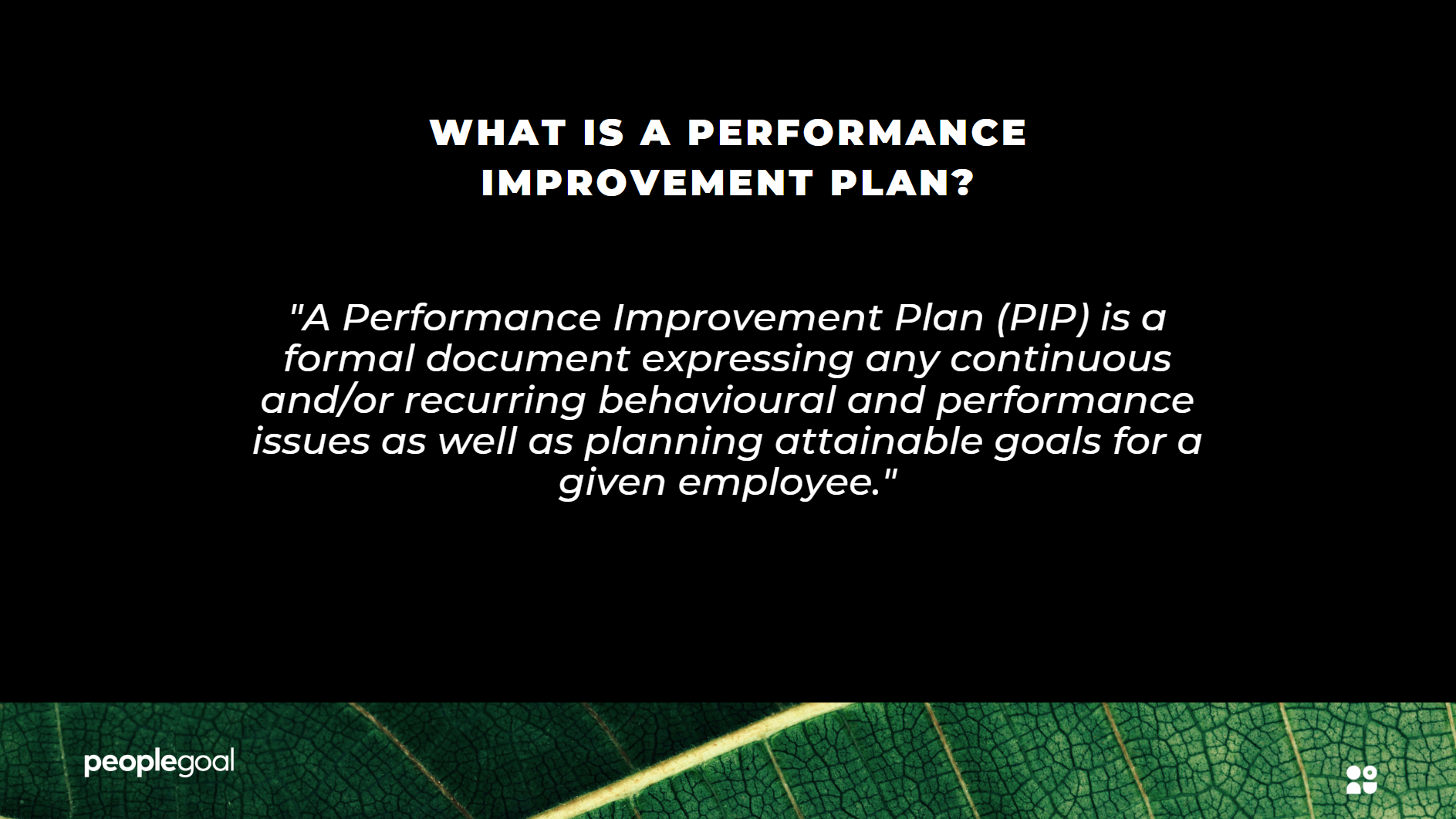 Performance Improvement Plan Definition