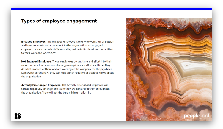 Employee Engagement - Types