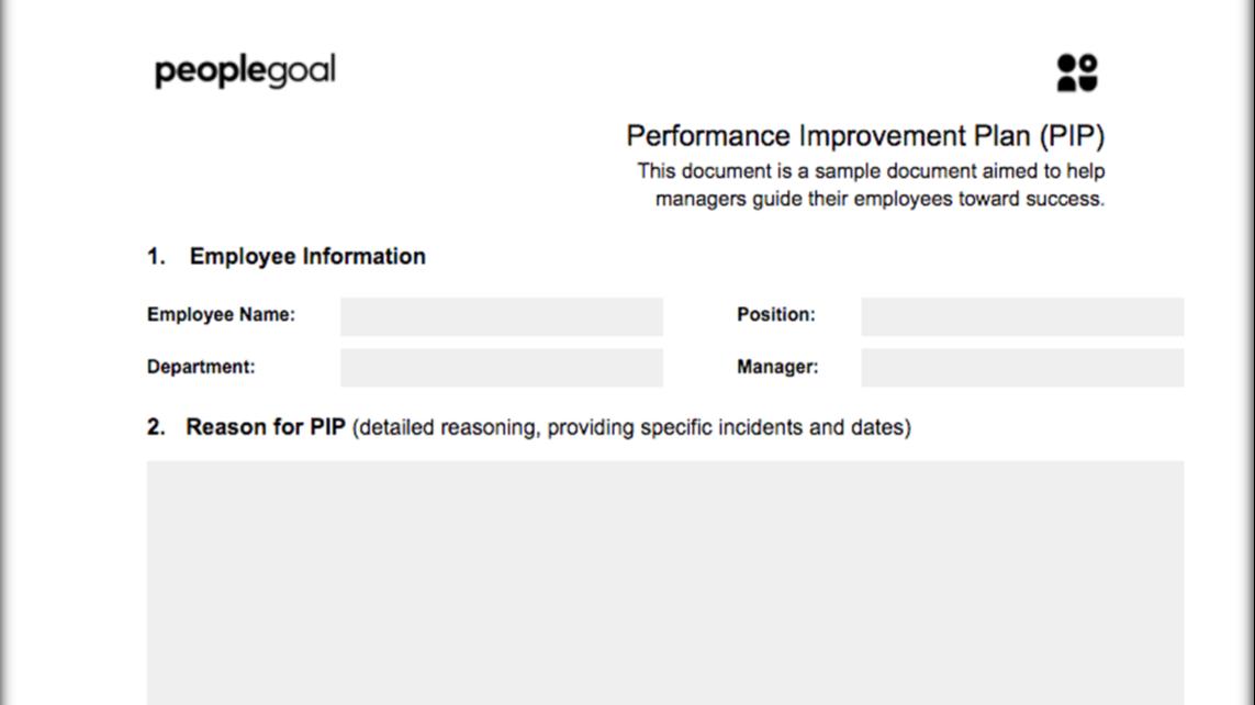 Performance improvement plan template 2