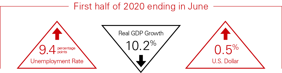 2020 Mid-Year Industry Report Summary Economy