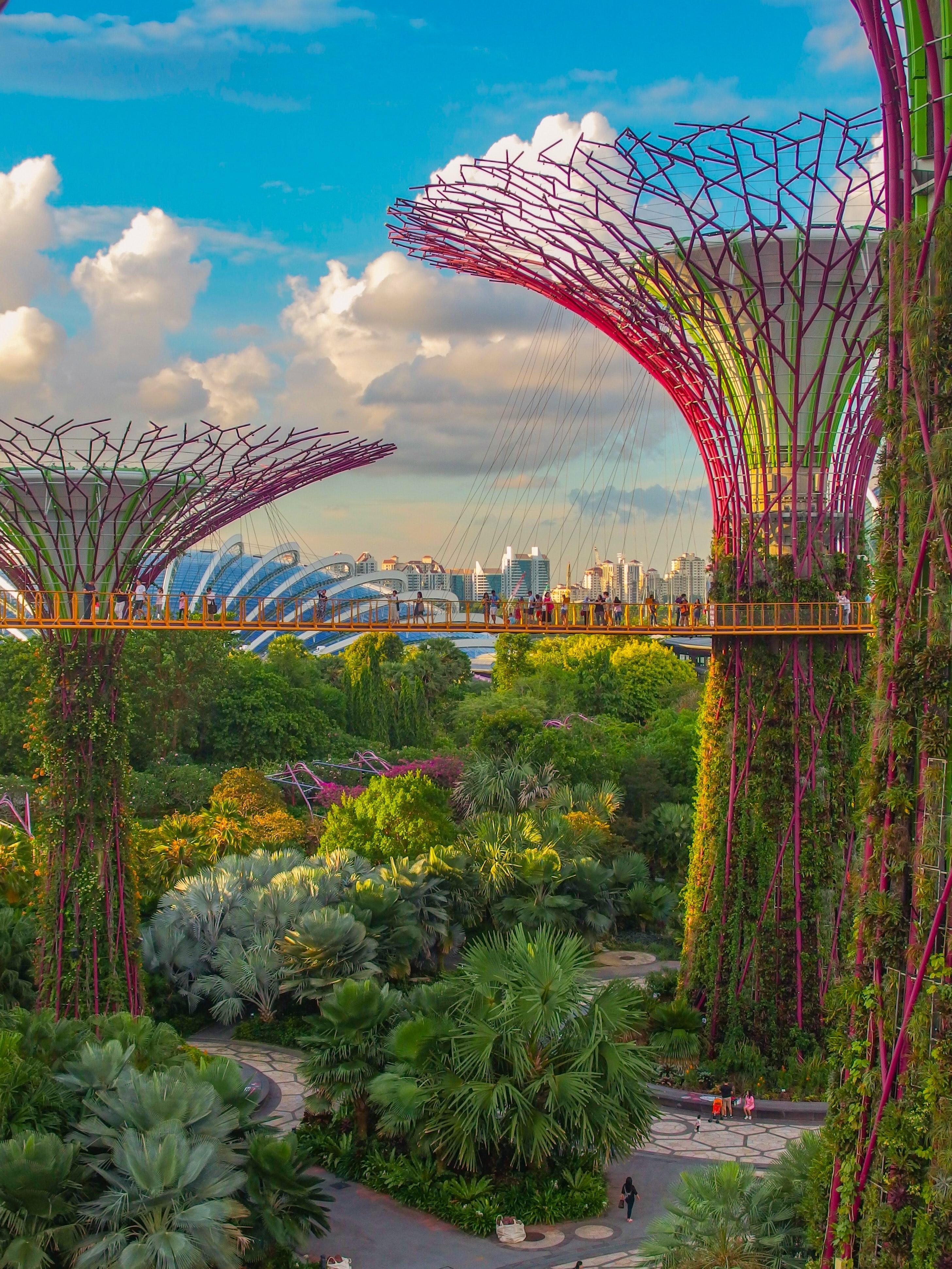 新加坡 花園