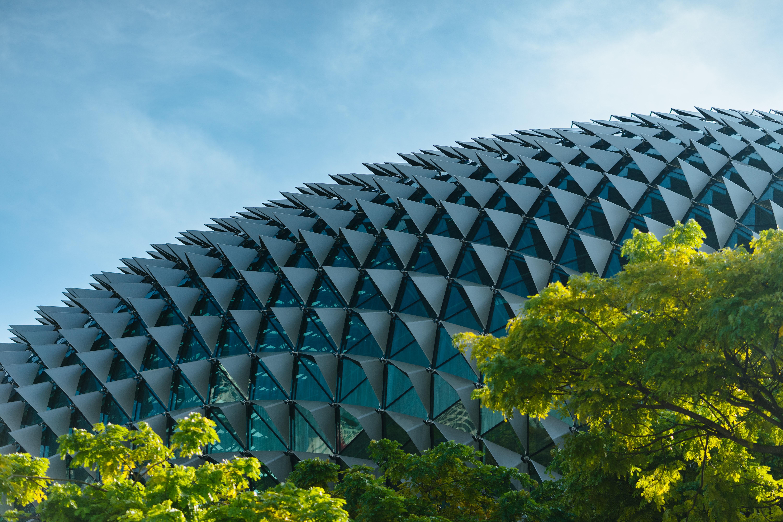 新加坡 榴槤