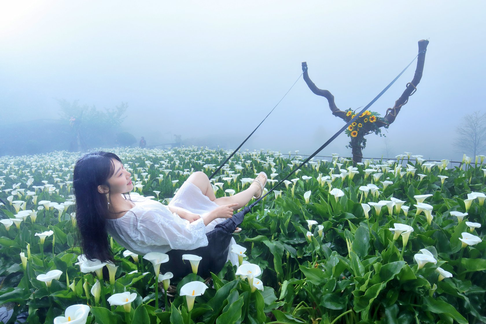 名陽匍休閒農莊的彈弓造景