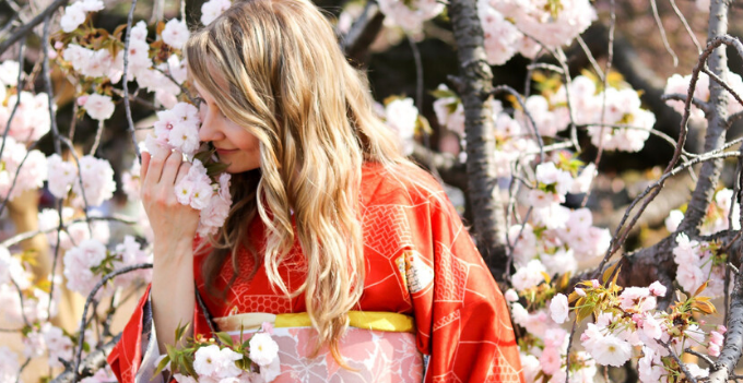 tokyo japan walking tour kimono photography professional cherry blossom