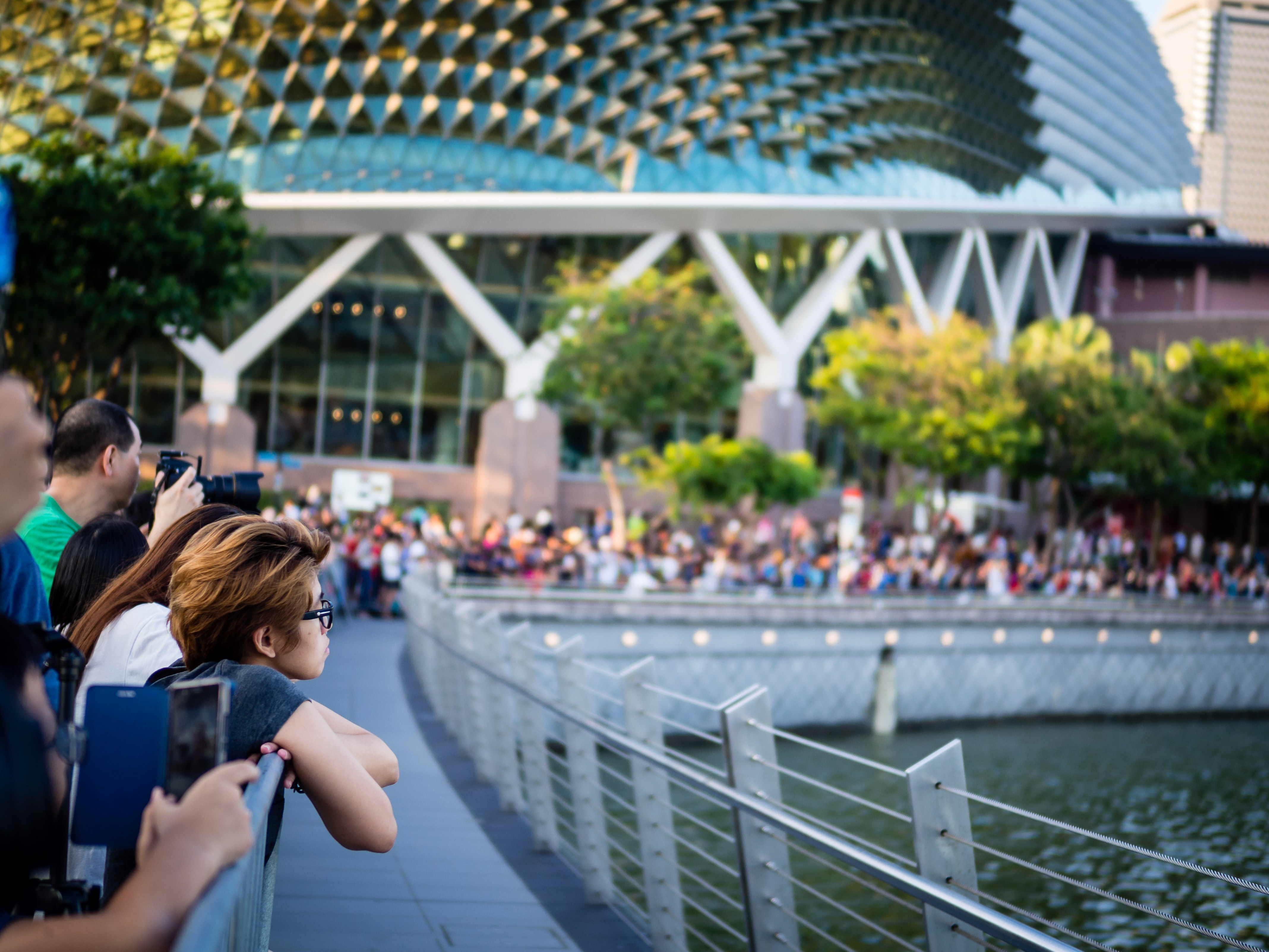 新加坡 榴蓮