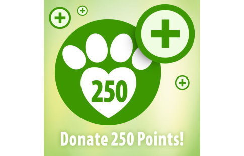 Donate 250 zooPoints!