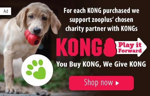 Pet Supplies At Zooplus Online Pet Shop Pet Food Pet Accessories