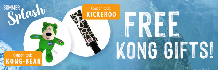 FREE KONG Toy for your dog or cat!