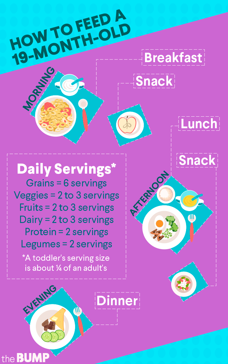 19-Month-Old Feeding Schedule. 19-mos-toddler-feeding-chart