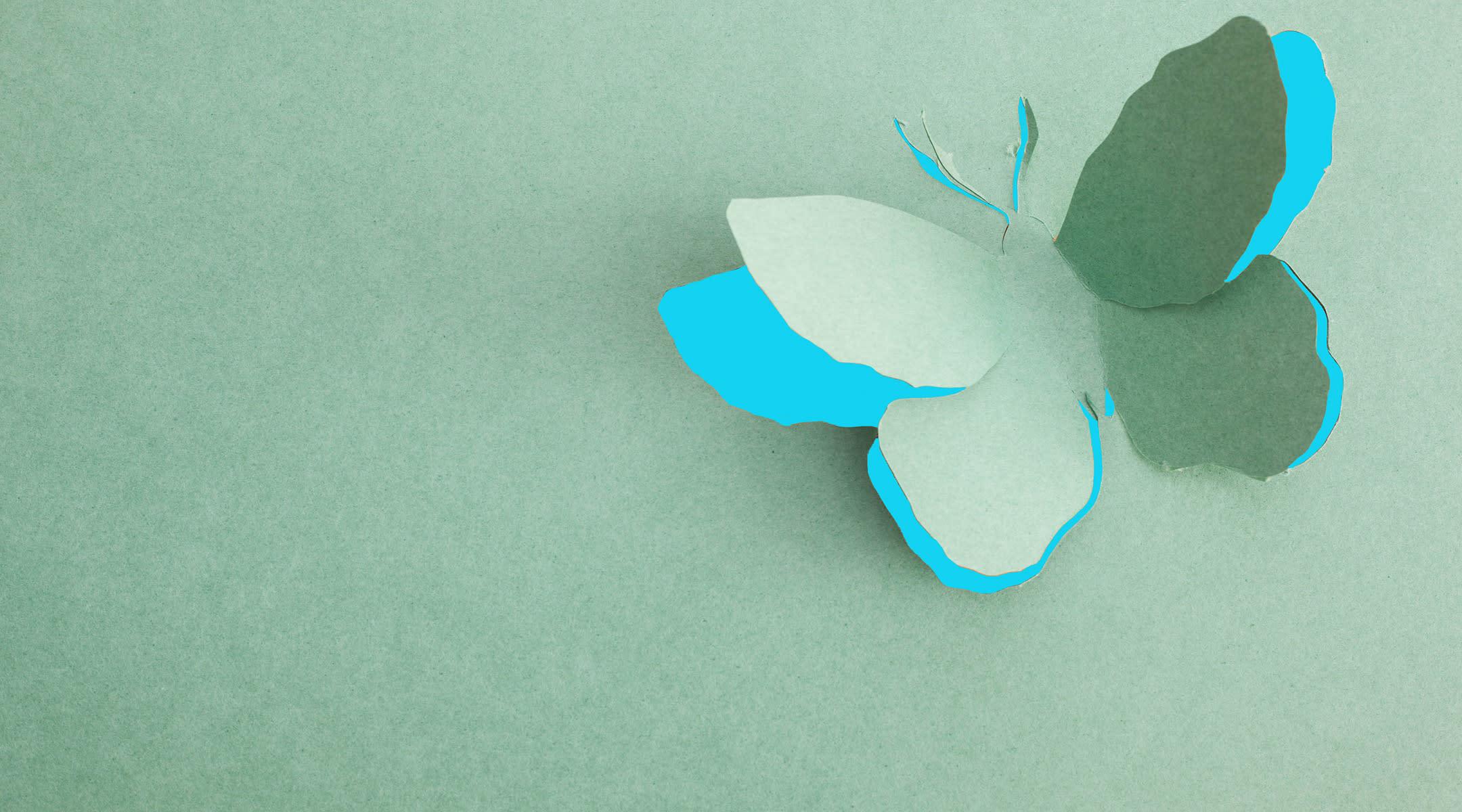 paper butterfly taking flight