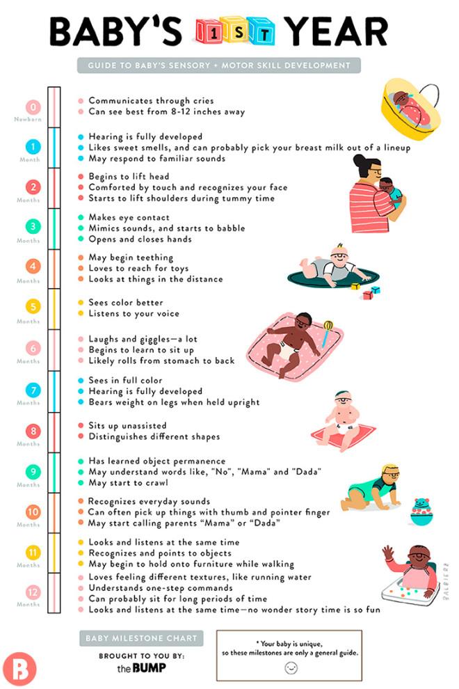 principles of life 2e pdf tpb