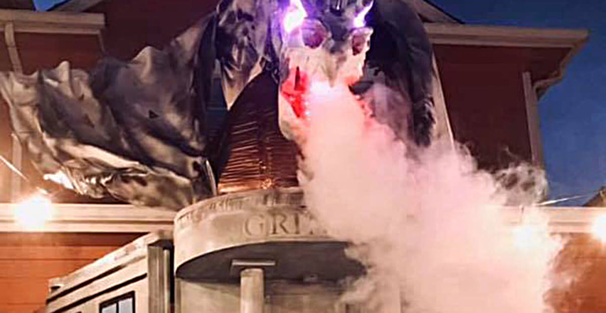 This Family Recreated Diagon Alley for Halloween and It's Magical