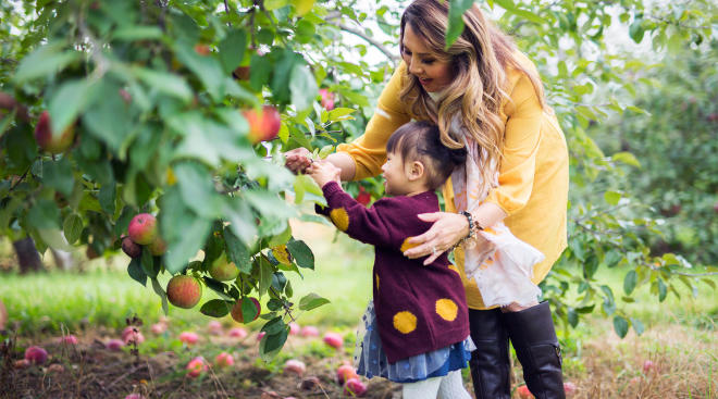 mom helping her toddler daughter pick apples in the fall