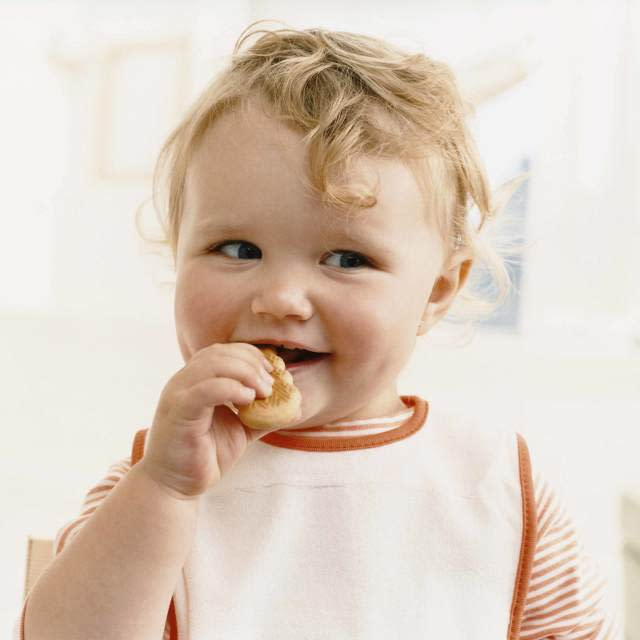 Dig In! A Solid Food Starter Guide