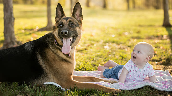 cute baby happily looking at pet dog