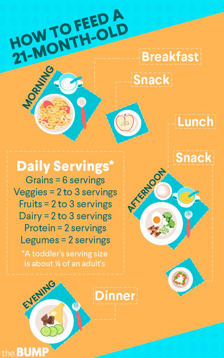 21 Mos Toddler Feeding Chart