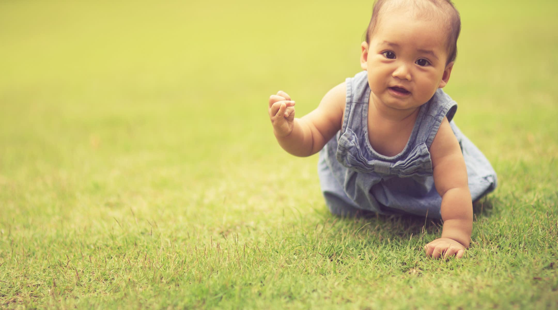 crawl - photo #3