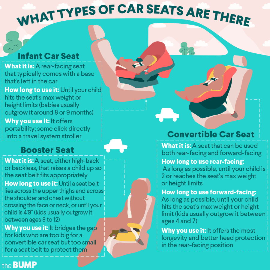 Car Seat Safety Infographic