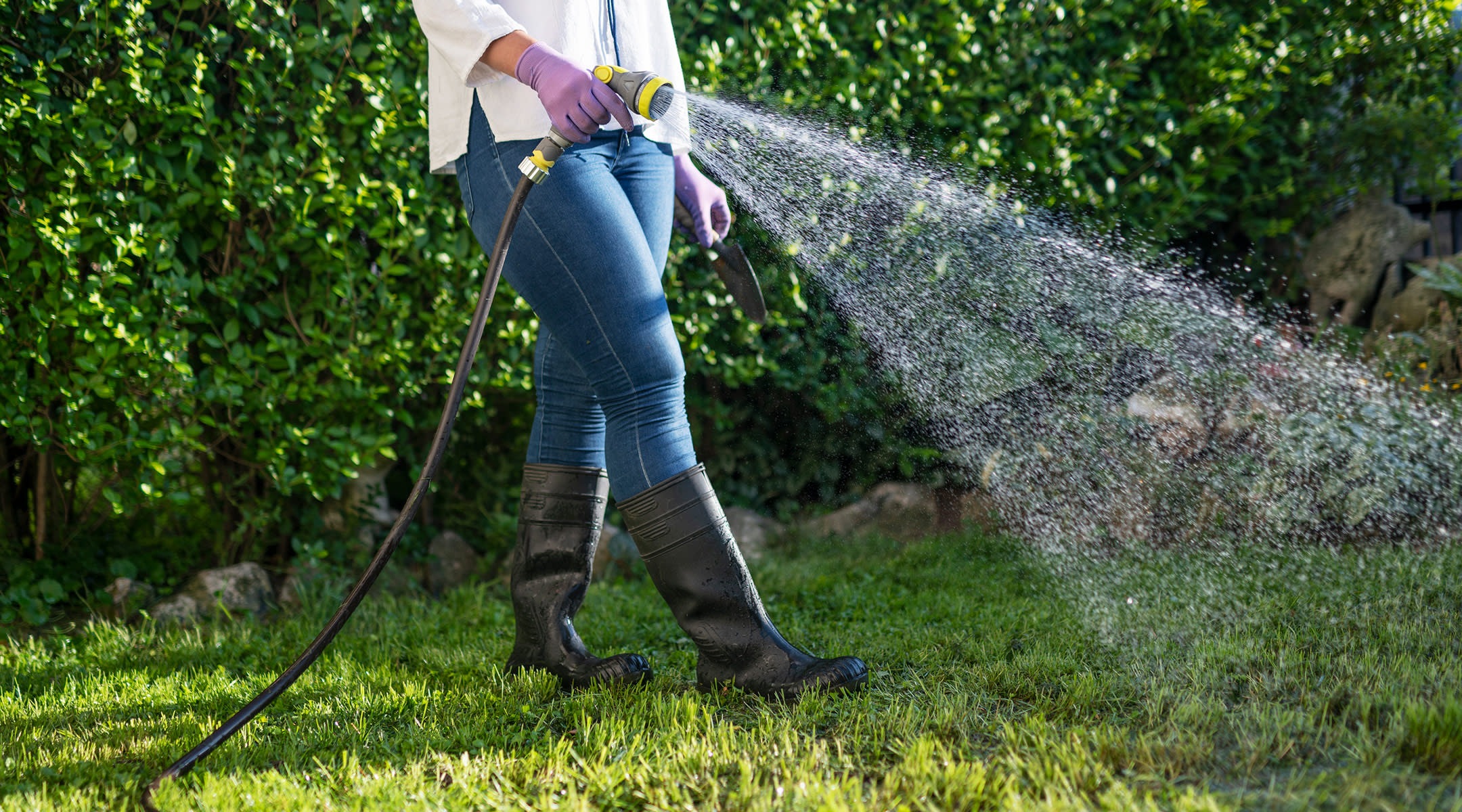 woman using garden hose to water lawn